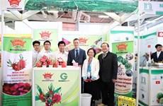越南企业参加2020年德国柏林国际水果蔬菜展览会