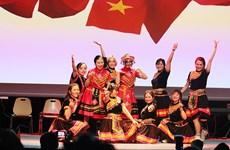 """""""越南精华""""活动向法国公众推介本国文化"""