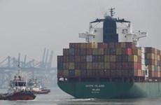 澳大利亚与印尼启动百日计划落实贸易协议