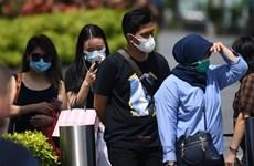 新冠肺炎疫情:新加坡新增病例和重症病例继续增加