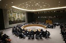 越南与联合国安理会:越南呼吁各方保持克制,寻求政治措施解决巴以冲突
