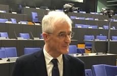 欧洲议会: 越南是值得信赖和开放的伙伴