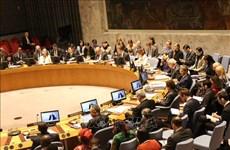 越南与联合国:保护儿童是和平进程的主要目标之一