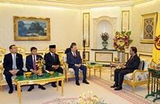 越南公安部部长苏林礼节性拜会文莱苏丹博尔基亚