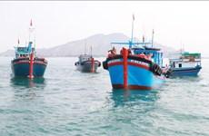 越南国家海洋经济可持续的发展战略执行指导委员会获批成立