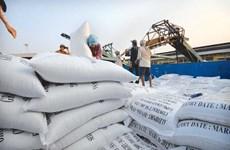 2020年菲律宾将仍是2020年世界第一大大米进口国