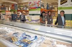 EVFTA成为推进越南与捷克经济关系的新动力