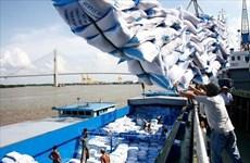 意大利专家:EVFTA标志着越南与欧盟贸易关系的新纪元