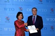 越南承诺同世贸组织保持密切配合