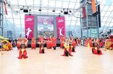 越德建交45周年纪念文化节举行