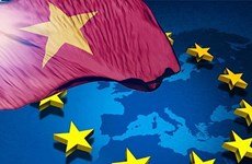 提高竞争能力——越南成功落实《越欧自贸协定》的基础