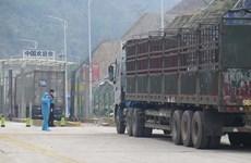 谅山省集中解决边境口岸货物进出口活动中出现的困难