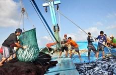 越南多措并举打击非法捕捞活动