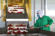 农产品出口未见起色