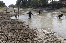 泰国协助农民应对长期干旱