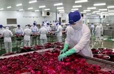 越南努力扩大农产品出口市场