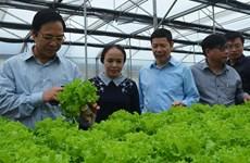 河南省加快完善农产品产销对接模式
