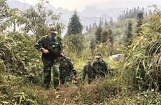 奋战在新冠肺炎防控一线的越南边防部队:官兵住帐篷、躺森林防止新冠肺炎疫情入侵(第一期)