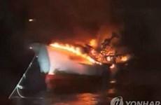 韩国济州岛附近海域一渔船起火致5名越南公民失踪:越南驻韩国大使馆采取必要措施保护公民