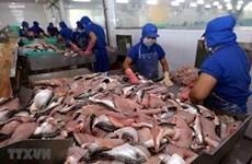新冠疫情致使越南查鱼对中国出口下降一半