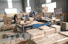 新冠肺炎疫情:木材企业需改变经营策略