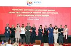 越南向第26届东盟经济部长非正式会议提出13项优先事项