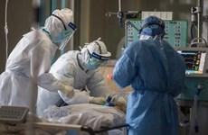越南发现第33例新冠肺炎感染病例
