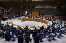 越南支持联合国安理会解决非洲面临的恐怖和暴力极端主义
