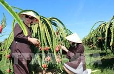 越南政府总理批准至2050年平顺省规划