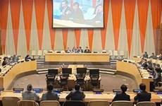 俄罗斯专家高度评价越南与俄罗斯在联合国的配合机制
