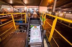 高产量助力PVCFC实现全年利润目标的69%