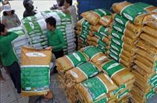 新冠肺炎疫情:供应增加柬埔寨大米价格稳定