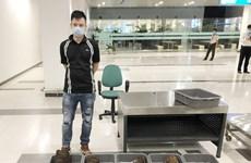 芹苴市警察调查处逮捕将近30公斤犀牛角从韩国运往芹苴市的不法人员