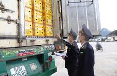 工贸部:在就卫生检疫流程达成一致后才把货物运到越柬边境口岸