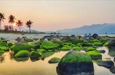 岘港市拨出460亿越盾发展南乌旅游区