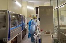 越南新冠肺炎病例累计达113例