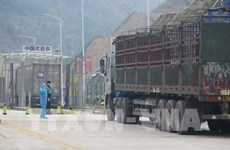 促进货物进出口的同时不能忽视防疫措施