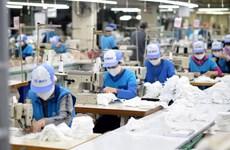 越南纺织服装集团向市场供应抗菌口罩超过3800万只
