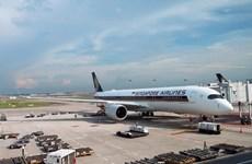 受新冠肺炎疫情影响新加坡航空将停飞96%航班