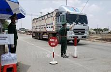 越南与柬埔寨边境贸易交往保持稳定