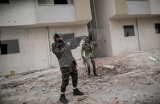 越南呼吁有关各方遵守利比亚停火协议