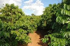林同省优先做好促进农产品产销对接工作