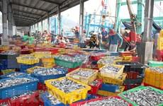 实现渔业可持续发展  带来更高经济价值