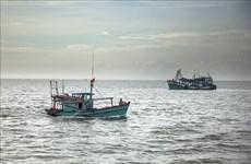 平定省重罚侵犯外国水域的渔船