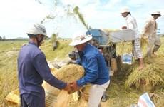 阮春福总理:控制大米出口 确保粮食安全