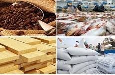 今年第一季度越南农林水产品贸易顺差增长近49%