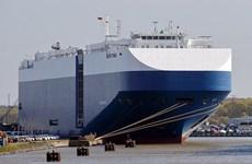 海防市:对滚装集装箱船进行喷雾消毒 避免新冠病毒入侵