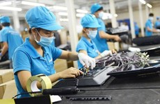 新冠肺炎疫情:乂安省企业从挑战中寻找机遇