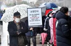 新冠肺炎疫情:韩国劳动部向越南劳务人员免费发放医用口罩
