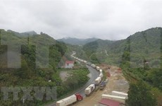 新冠肺炎疫情:中国强化口岸管控 越南对华出口影响严重